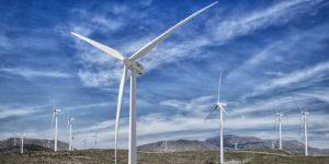 2020 será clave para la energía eólica en México; más de 1,300 millones de dólares se invertirán en este sector