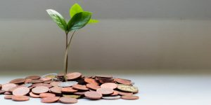 5 aplicaciones para que administres mejor el dinero y sobrevivas la cuarentena sin deudas