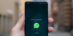 Whatsapp presenta fallas a nivel mundial — se borra la última hora de conexión y el estatus de «en línea»