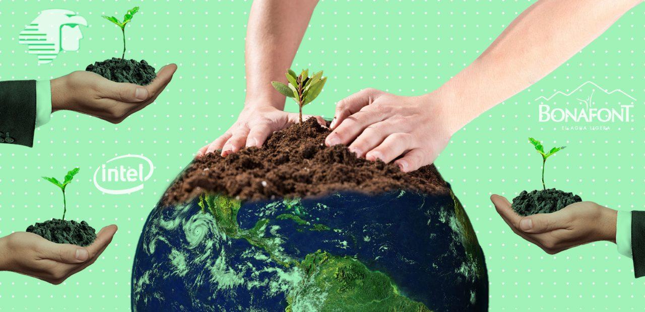 empresas marcas y el medio ambiente