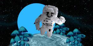 Hongos de Chernobyl podrían proteger a astronautas de la radiación espacial