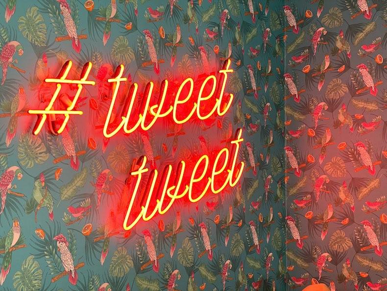 twitter | Expertos en Línea