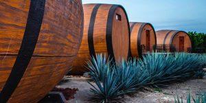 Puedes dormir en un barril en un campo de agave azul en este hotel y beber tequila directamente de la fuente